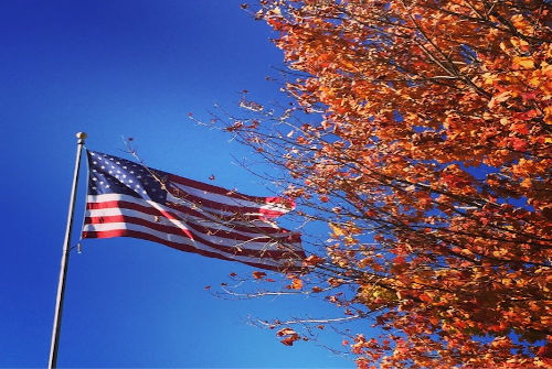 American flag next to tree covered in autumn leaves.